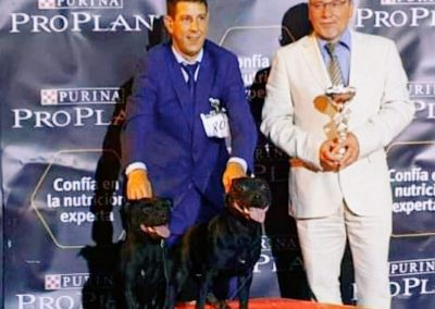 Roberto sureño Kennel 5