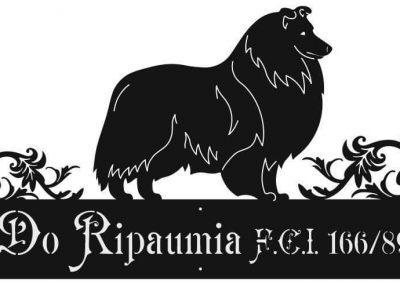 do ripaumia Indagadog (10)